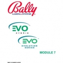 Bally Gaming Systems, EVO Video Manuals